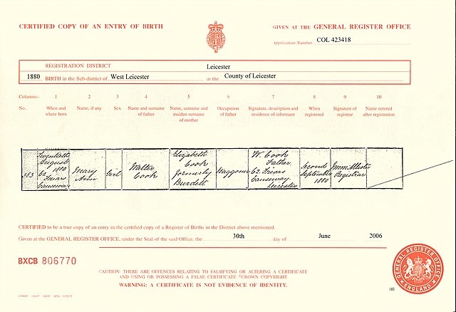 The birth certificate for Mary Cook (1880)