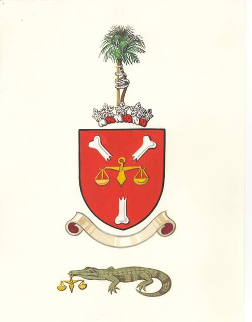 First draft of a new coat of arms