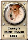Casey's Celtic Charm Award Program