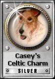 Casey's Celtic Charm Silver Award: See the original